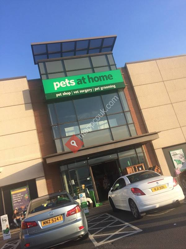 Pets at Home Belfast