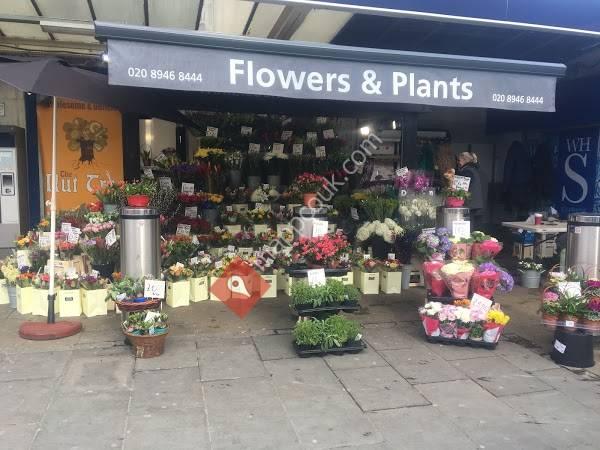 Wimbledon Flower Kiosk